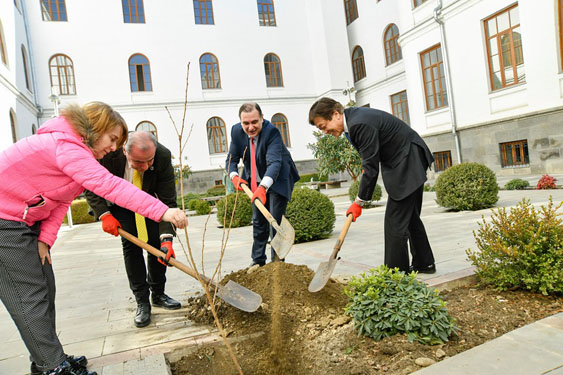 Sakura Trees Planted in the Yard of 1st Building of TSU